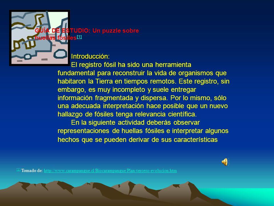 [1] [1] Tomado de: http://www.carampangue.cl/Biocarampangue/Plan-tercero-evolucion.htmhttp://www.carampangue.cl/Biocarampangue/Plan-tercero-evolucion.