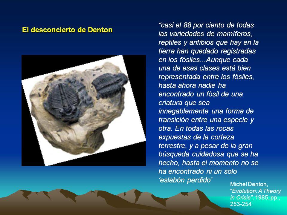 casi el 88 por ciento de todas las variedades de mamíferos, reptiles y anfibios que hay en la tierra han quedado registradas en los fósiles...Aunque c