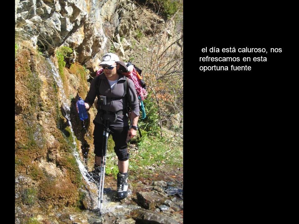 Tendeñera 2853 Sabocos 2757 Telera 2764