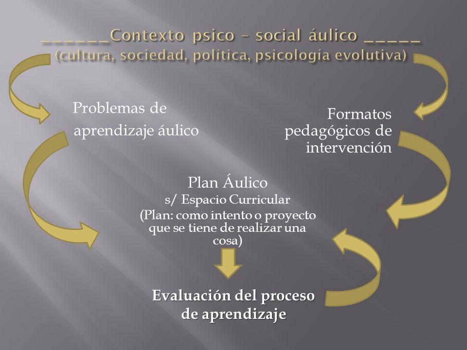 Evaluación del proceso de aprendizaje Formatos pedagógicos de intervención Problemas de aprendizaje áulico Plan Áulico s/ Espacio Curricular (Plan: co