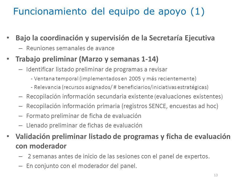 Funcionamiento del equipo de apoyo (1) 13 Bajo la coordinación y supervisión de la Secretaría Ejecutiva – Reuniones semanales de avance Trabajo prelim