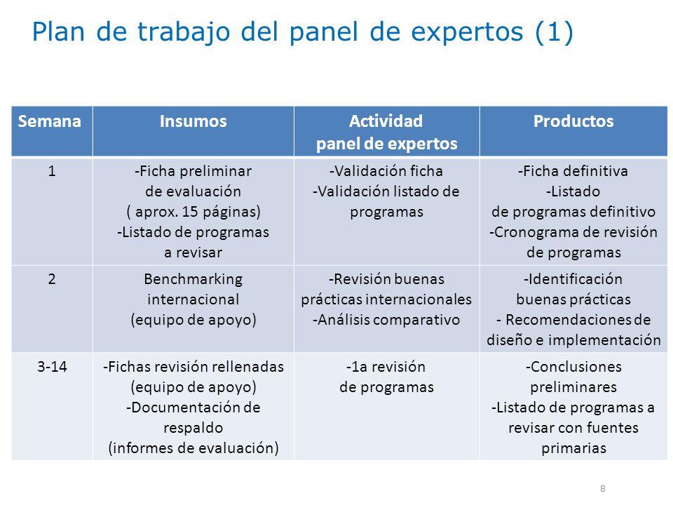 Plan de trabajo del panel de expertos (1) 8 SemanaInsumosActividad panel de expertos Productos 1-Ficha preliminar de evaluación ( aprox. 15 páginas) -