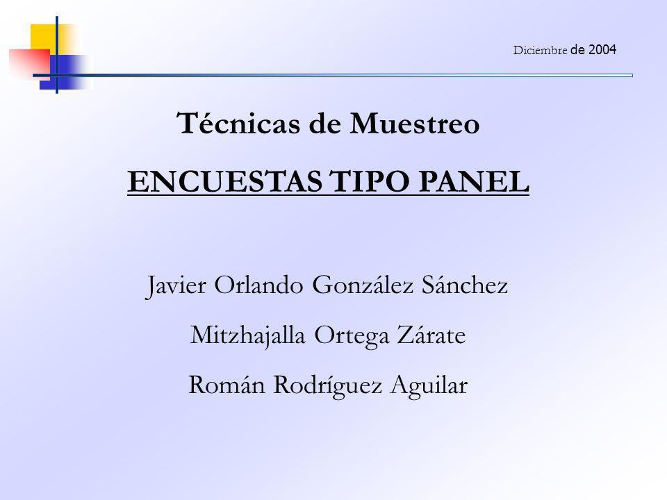 Técnicas de Muestreo ENCUESTAS TIPO PANEL Javier Orlando González Sánchez Mitzhajalla Ortega Zárate Román Rodríguez Aguilar Diciembre de 2004