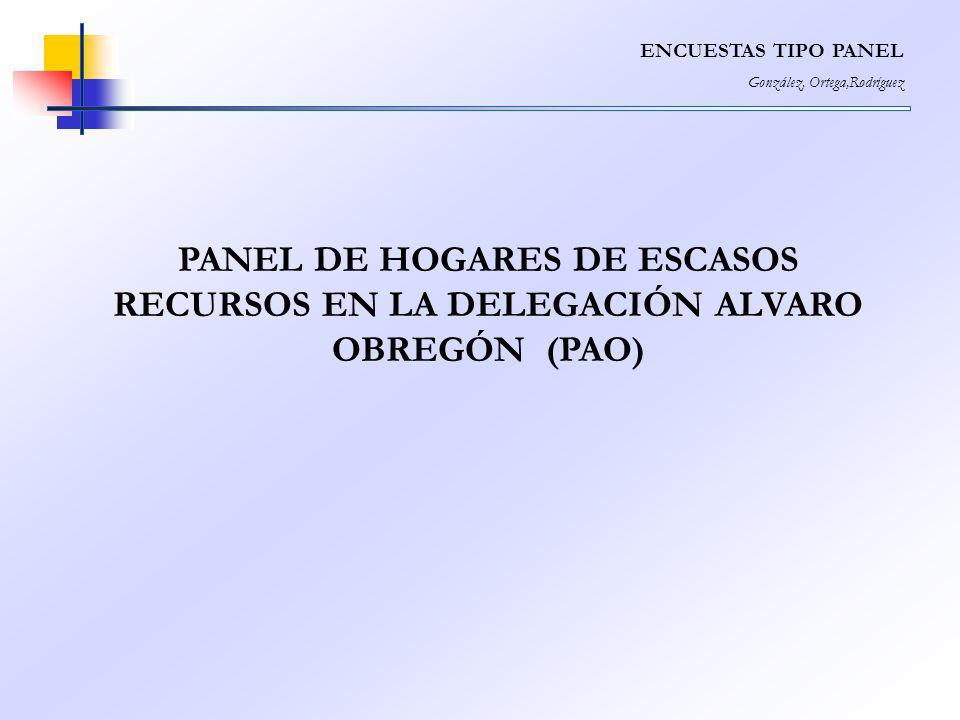ENCUESTAS TIPO PANEL González, Ortega,Rodríguez PANEL DE HOGARES DE ESCASOS RECURSOS EN LA DELEGACIÓN ALVARO OBREGÓN (PAO)
