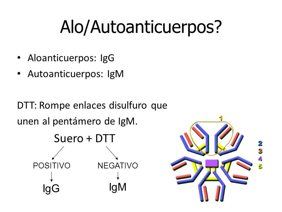 Aloanticuerpos: IgG Autoanticuerpos: IgM DTT: Rompe enlaces disulfuro que unen al pentámero de IgM. Suero + DTT Alo/Autoanticuerpos? POSITIVO IgG NEGA