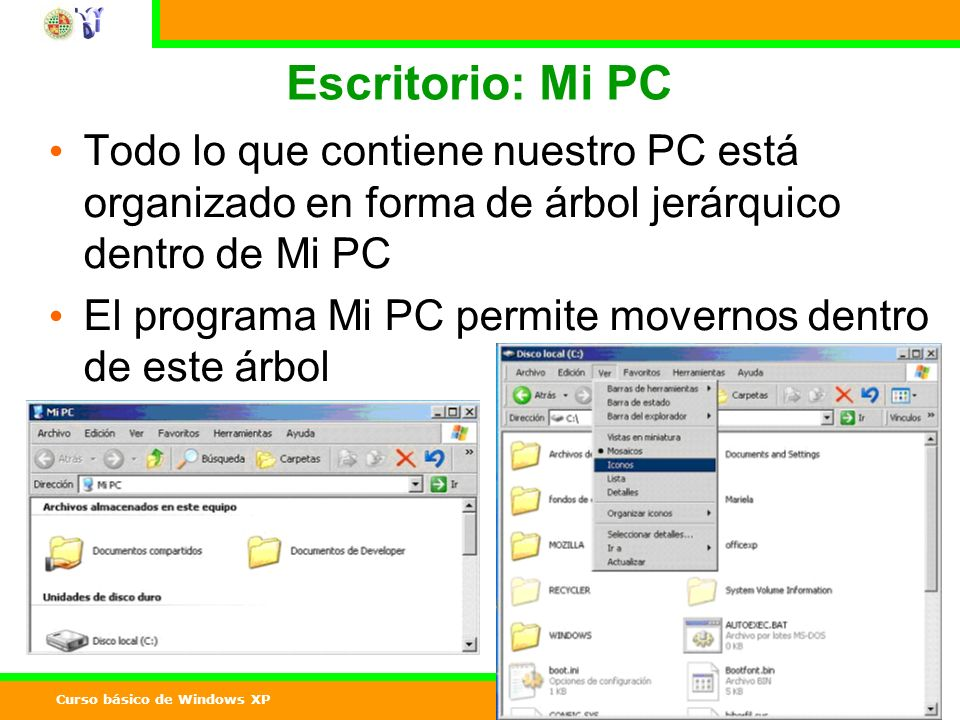 Curso básico de Windows XP 11 Escritorio: Mi PC Todo lo que contiene nuestro PC está organizado en forma de árbol jerárquico dentro de Mi PC El programa Mi PC permite movernos dentro de este árbol