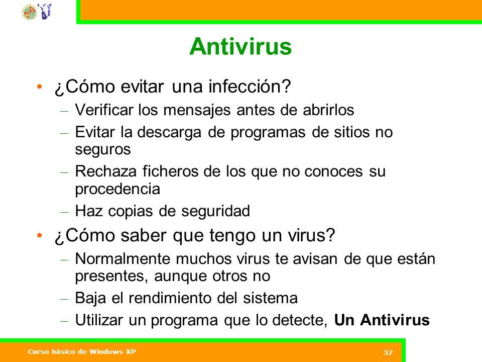 Curso básico de Windows XP 37 Antivirus ¿Cómo evitar una infección.