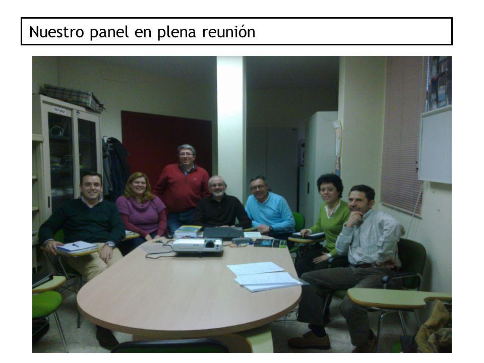 Nuestro panel en plena reunión