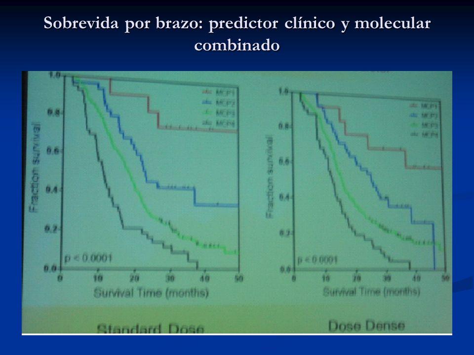 Sobrevida por brazo: predictor clínico y molecular combinado