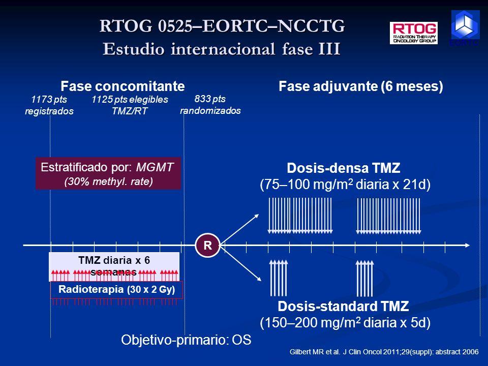 Consideraciones estadísticas Estudio randomizado 1.1 Estudio randomizado 1.1 Los factores de estratificación Los factores de estratificación RPA clase (III, IV, V) RPA clase (III, IV, V) MGMT (metilado, no metilados, sin determinar) MGMT (metilado, no metilados, sin determinar) Tipo de radiación (European EE.UU.) Tipo de radiación (European EE.UU.) Cálculo del tamaño muestral Cálculo del tamaño muestral Mejora de la mediana de supervivencia global (17,6 a más de 14 meses) hazard ratio = 0,80 Mejora de la mediana de supervivencia global (17,6 a más de 14 meses) hazard ratio = 0,80 Criterios de elección Diagnóstico confirmado de gliobastoma o gliosarcoma (WHO grado 4) Muestra de tejido tumoral >= 1 cm2 El tumor debe tener un componente supra tentorial.