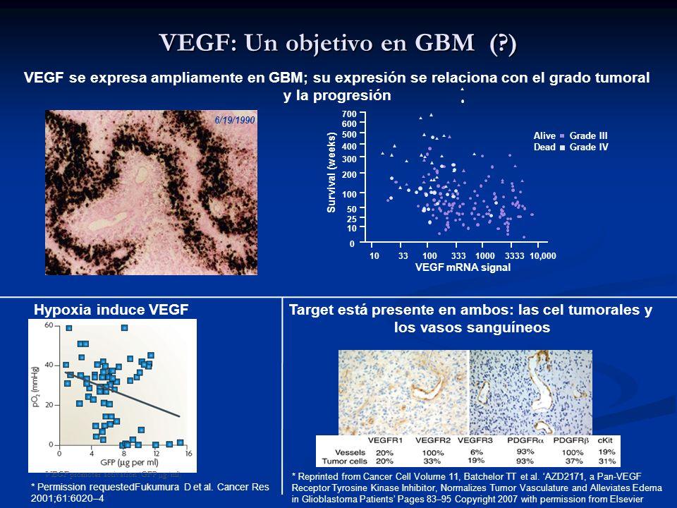 VEGF: Un objetivo en GBM (?) 6/19/1990 VEGF se expresa ampliamente en GBM; su expresión se relaciona con el grado tumoral y la progresión VEGF mRNA si