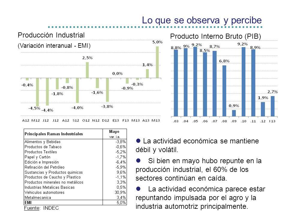 Lo que se observa y percibe Producción Industrial (Variación interanual - EMI) Producto Interno Bruto (PIB) Fuente: INDEC La actividad económica se mantiene débil y volátil.