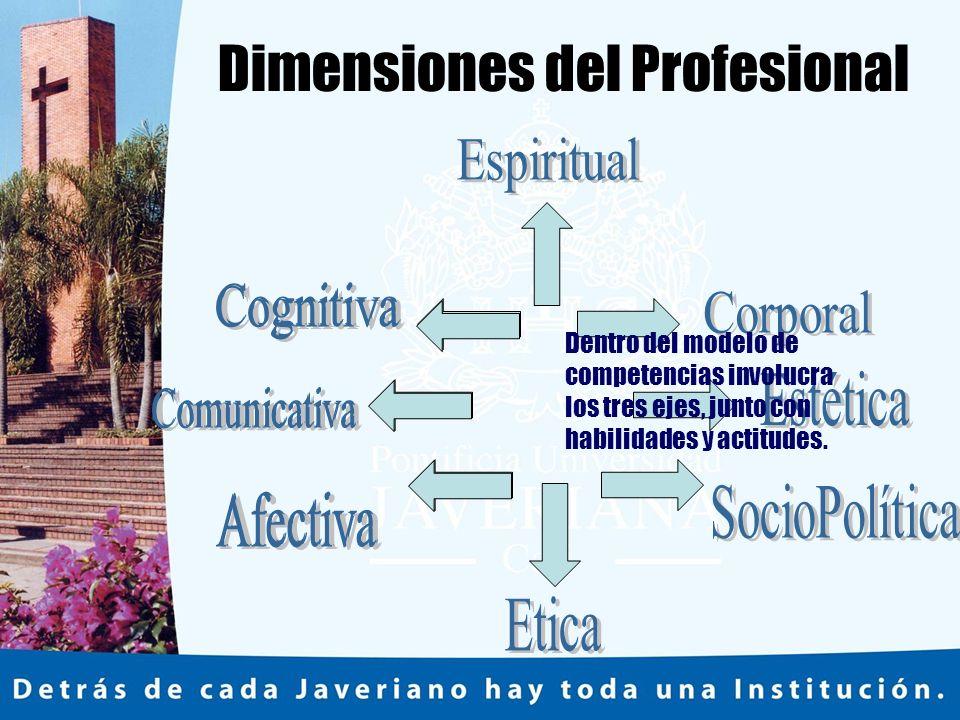 Dimensiones del Profesional Dentro del modelo de competencias involucra los tres ejes, junto con habilidades y actitudes.