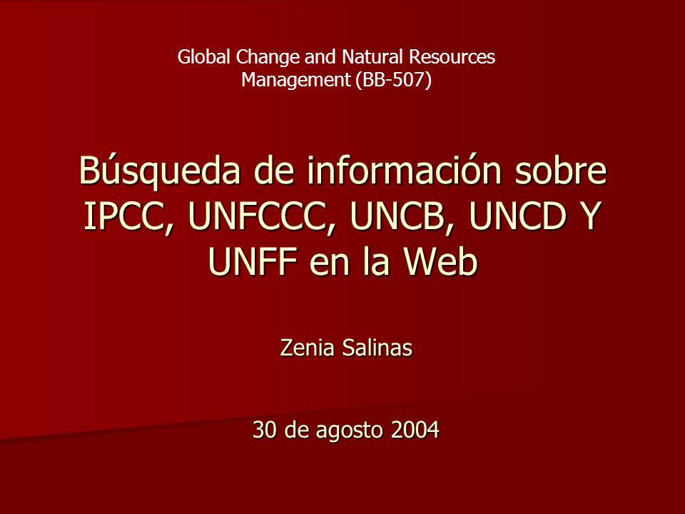 Búsqueda de información sobre IPCC, UNFCCC, UNCB, UNCD Y UNFF en la Web Zenia Salinas 30 de agosto 2004 Global Change and Natural Resources Management