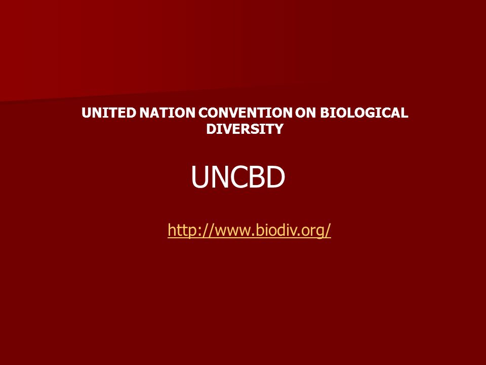 UNCBD http://www.biodiv.org/ UNITED NATION CONVENTION ON BIOLOGICAL DIVERSITY