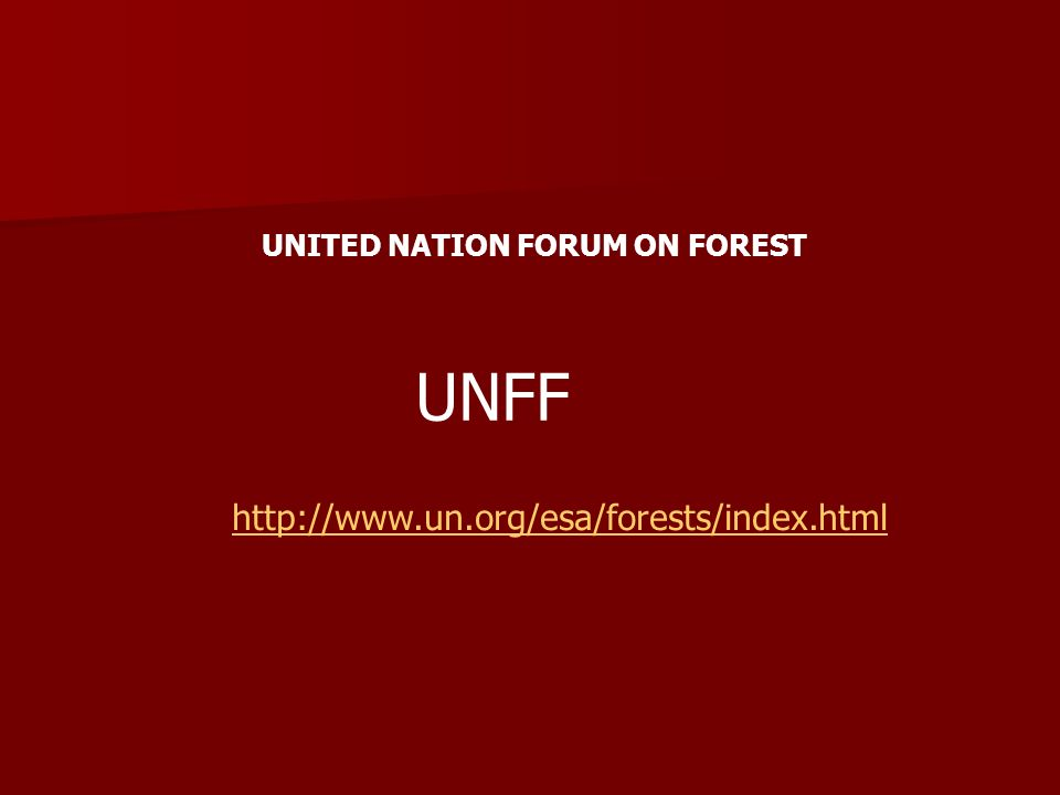 UNFF http://www.un.org/esa/forests/index.html UNITED NATION FORUM ON FOREST