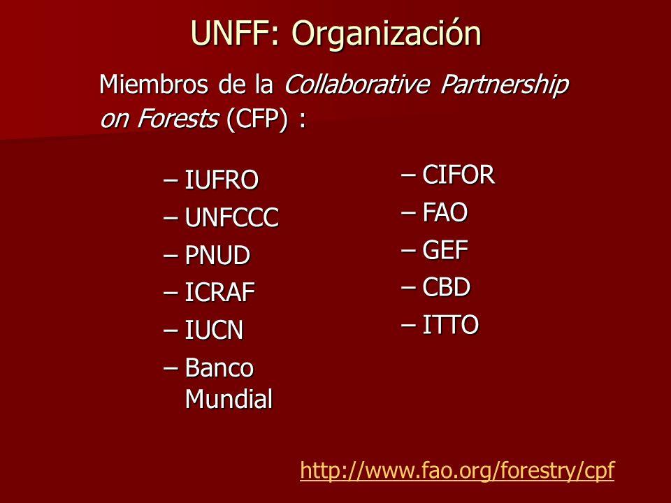 UNFF: Organización –IUFRO –UNFCCC –PNUD –ICRAF –IUCN –Banco Mundial Miembros de la Collaborative Partnership on Forests (CFP) : http://www.fao.org/for