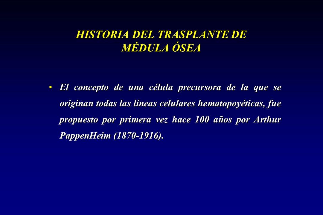 HISTORIA DEL TRASPLANTE DE MÉDULA ÓSEA El concepto de una célula precursora de la que se originan todas las líneas celulares hematopoyéticas, fue prop