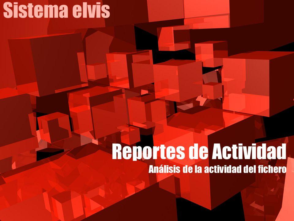Sistema elvis Reportes de Actividad Análisis de la actividad del fichero