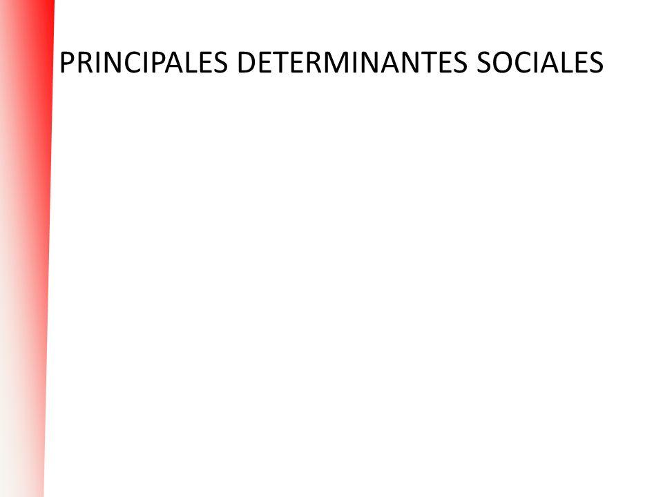 PRINCIPALES DETERMINANTES SOCIALES