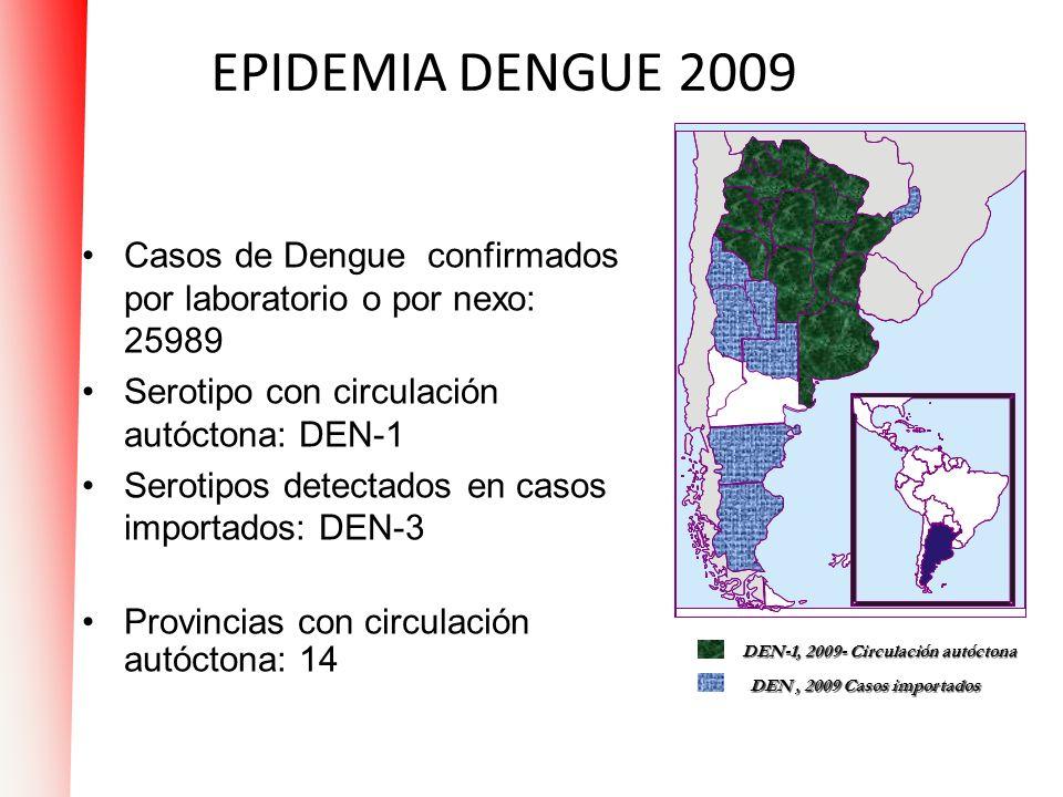 EPIDEMIA DENGUE 2009 Casos de Dengue confirmados por laboratorio o por nexo: 25989 Serotipo con circulación autóctona: DEN-1 Serotipos detectados en c