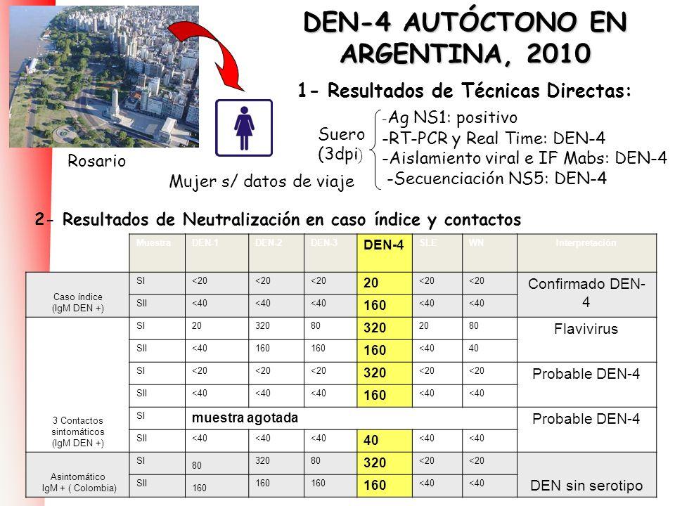 DEN-4 AUTÓCTONO EN ARGENTINA, 2010 1- Resultados de Técnicas Directas: MuestraDEN-1DEN-2DEN-3 DEN-4 SLEWNInterpretación Caso índice (IgM DEN +) SI<20