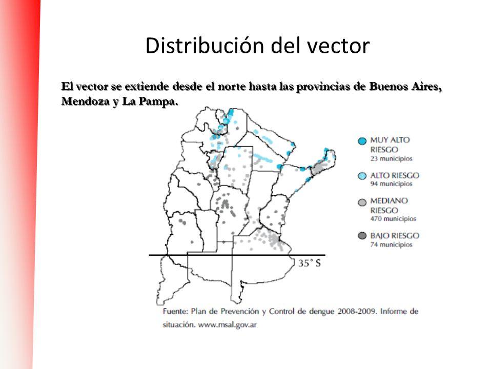 Distribución del vector El vector se extiende desde el norte hasta las provincias de Buenos Aires, Mendoza y La Pampa.