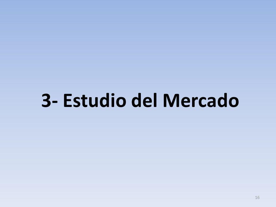 3- Estudio del Mercado 16