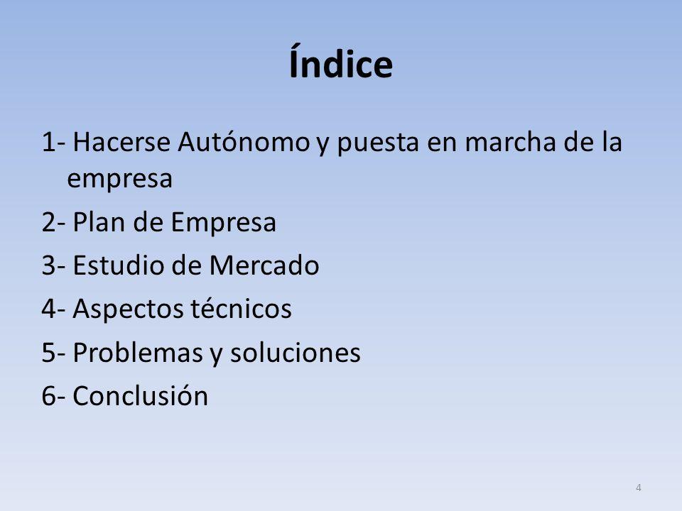 Índice 1- Hacerse Autónomo y puesta en marcha de la empresa 2- Plan de Empresa 3- Estudio de Mercado 4- Aspectos técnicos 5- Problemas y soluciones 6-