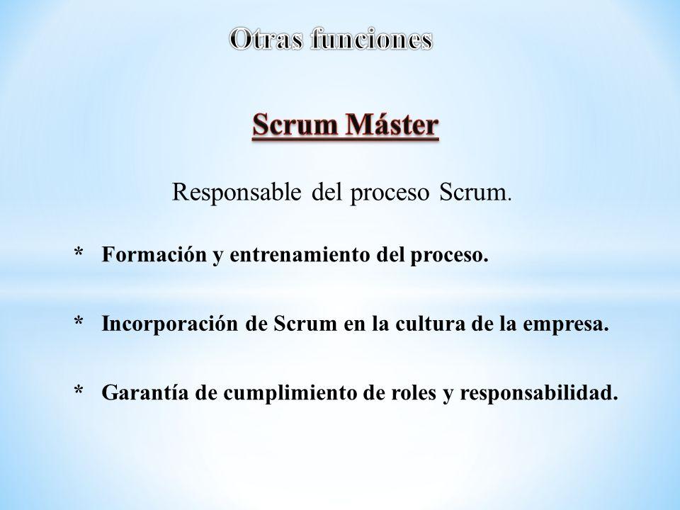 Responsable del proceso Scrum. * Formación y entrenamiento del proceso. * Incorporación de Scrum en la cultura de la empresa. * Garantía de cumplimien