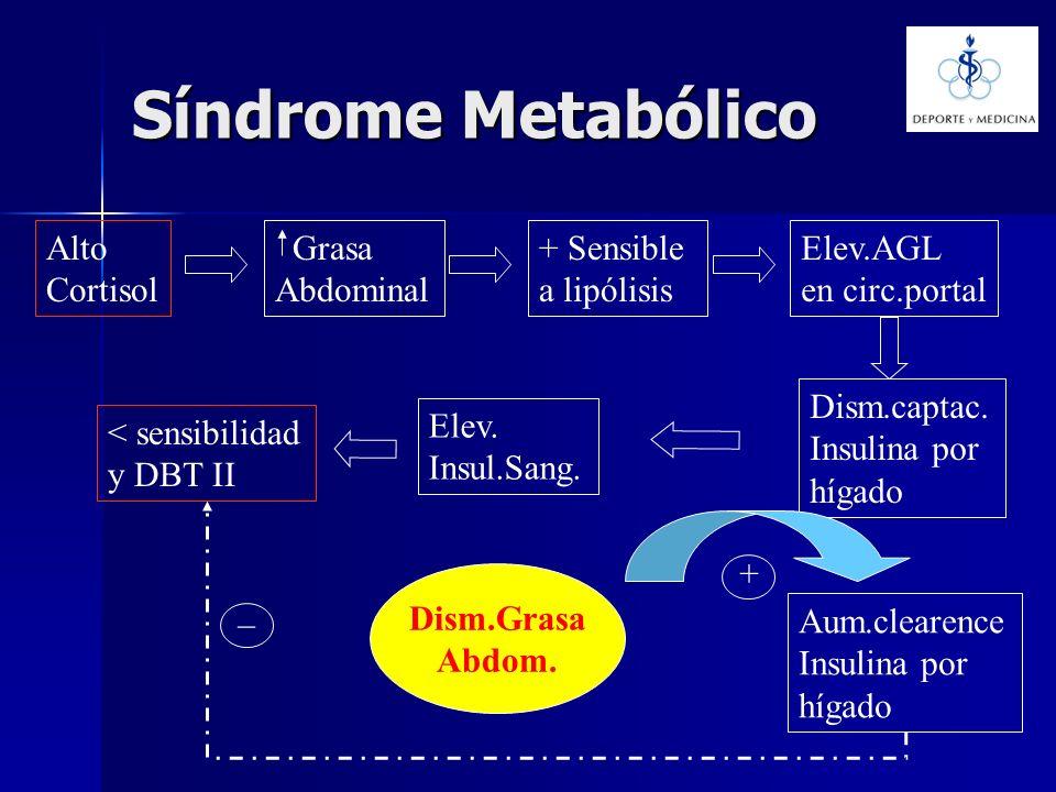 Síndrome Metabólico Alto Cortisol Grasa Abdominal + Sensible a lipólisis Elev.AGL en circ.portal Dism.captac. Insulina por hígado Aum.clearence Insuli