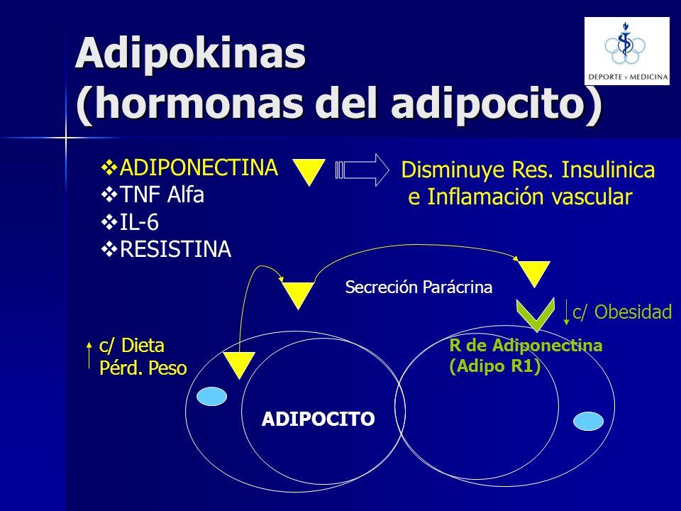 Adipokinas (hormonas del adipocito) ADIPONECTINA TNF Alfa IL-6 RESISTINA Disminuye Res. Insulinica e Inflamación vascular R de Adiponectina (Adipo R1)
