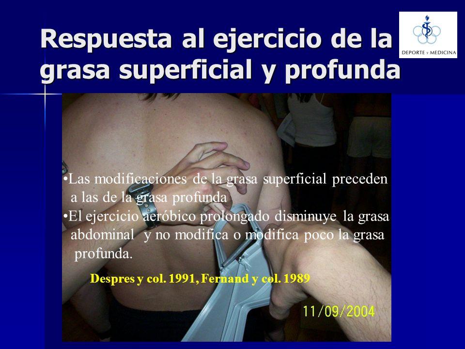 Respuesta al ejercicio de la grasa superficial y profunda Las modificaciones de la grasa superficial preceden a las de la grasa profunda El ejercicio