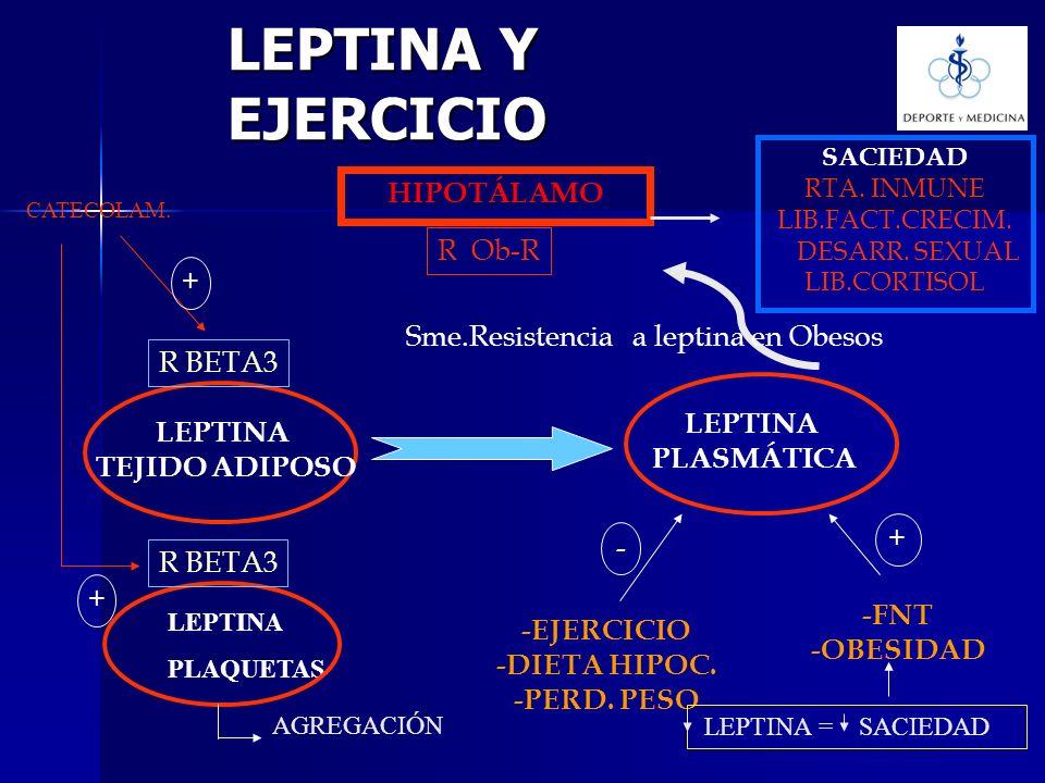 LEPTINA Y EJERCICIO LEPTINA TEJIDO ADIPOSO LEPTINA PLASMÁTICA HIPOTÁLAMO R Ob-R SACIEDAD RTA. INMUNE LIB.FACT.CRECIM. DESARR. SEXUAL LIB.CORTISOL R BE