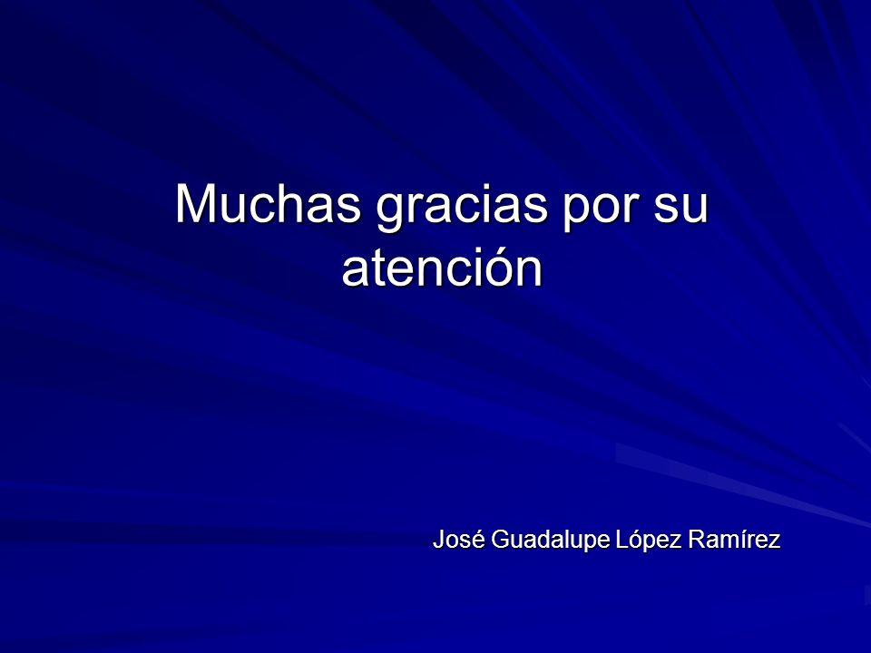 Muchas gracias por su atención José Guadalupe López Ramírez