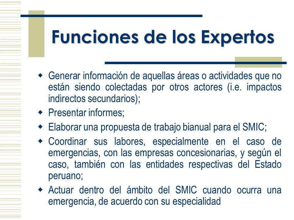 Funciones de los Expertos Generar información de aquellas áreas o actividades que no están siendo colectadas por otros actores (i.e.