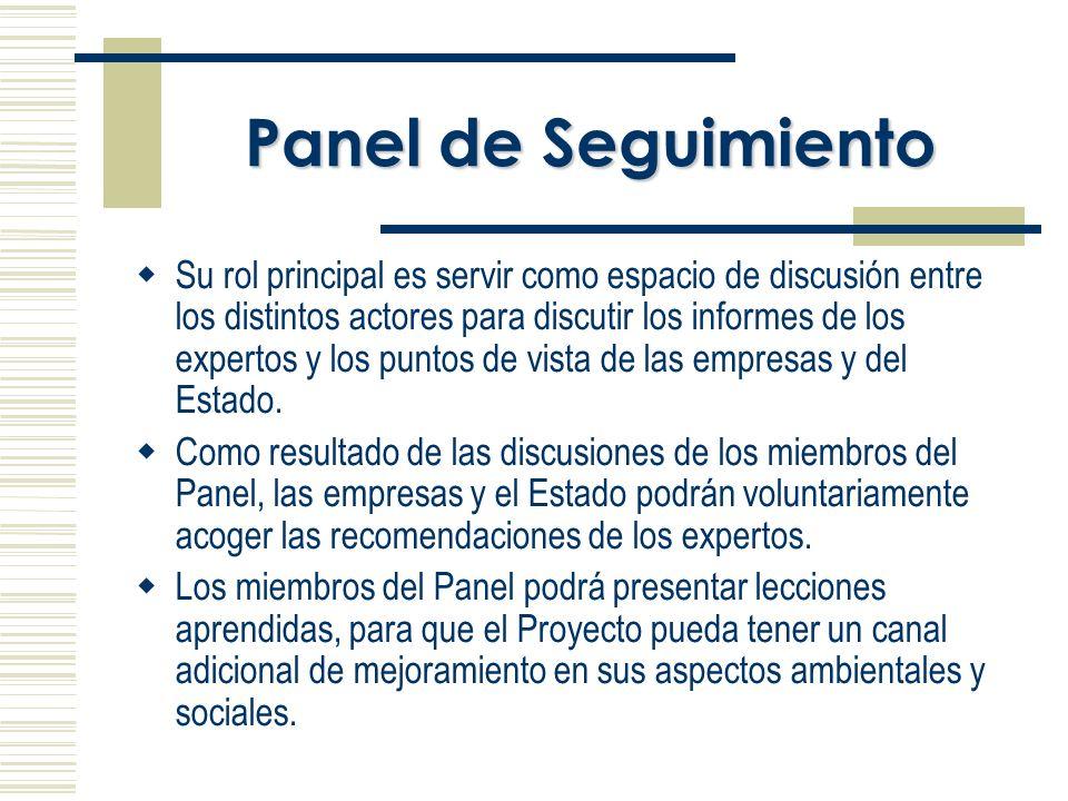 Panel de Seguimiento Su rol principal es servir como espacio de discusión entre los distintos actores para discutir los informes de los expertos y los puntos de vista de las empresas y del Estado.