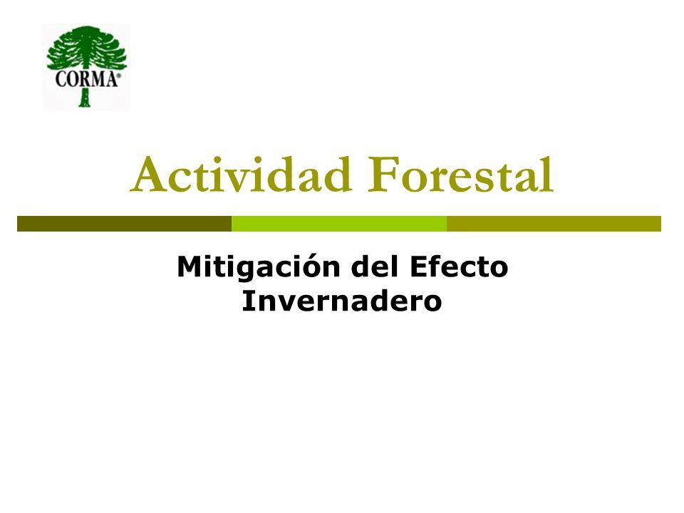 Actividad Forestal Mitigación del Efecto Invernadero