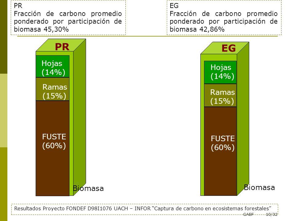 GAEF10/32 FUSTE (60%) Ramas (15%) Hojas (14%) PR Fracción de carbono promedio ponderado por participación de biomasa 45,30% Ramas (15%) Hojas (14%) FU