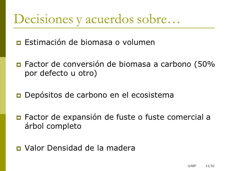 GAEF11/32 Decisiones y acuerdos sobre… Estimación de biomasa o volumen Factor de conversión de biomasa a carbono (50% por defecto u otro) Depósitos de