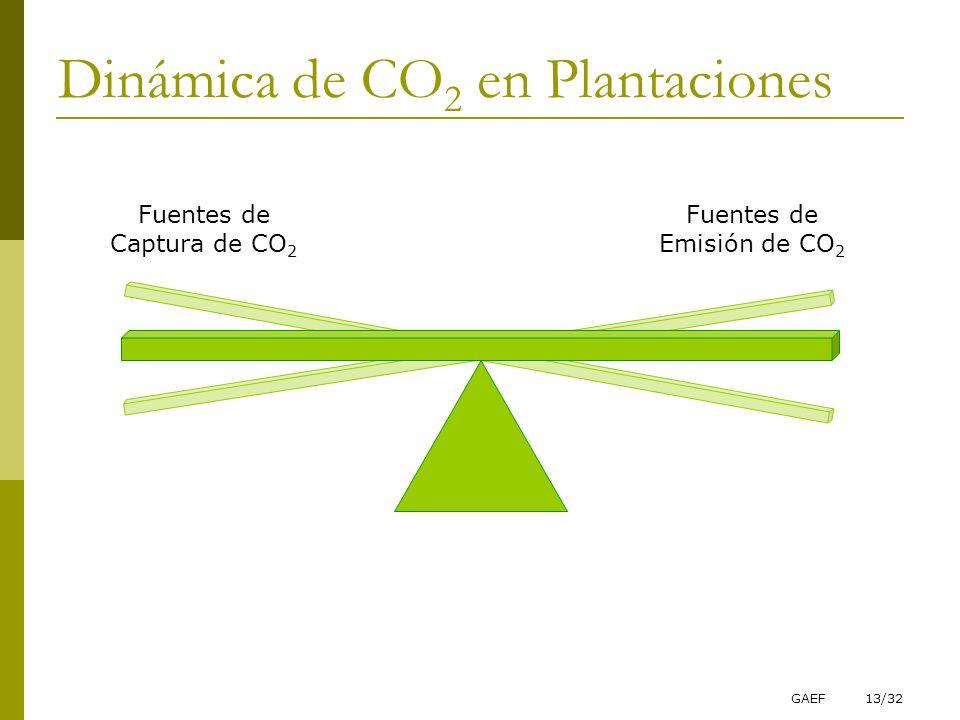 GAEF13/32 Fuentes de Captura de CO 2 Fuentes de Emisión de CO 2 Dinámica de CO 2 en Plantaciones