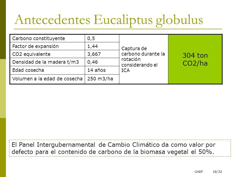 GAEF18/32 Antecedentes Eucaliptus globulus Carbono constituyente0,5 Captura de carbono durante la rotación considerando el ICA 304 ton CO2/ha Factor d