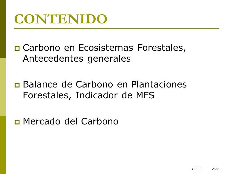 GAEF2/32 CONTENIDO Carbono en Ecosistemas Forestales, Antecedentes generales Balance de Carbono en Plantaciones Forestales, Indicador de MFS Mercado d