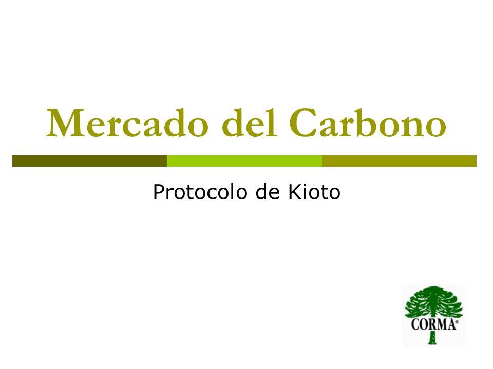 Mercado del Carbono Protocolo de Kioto
