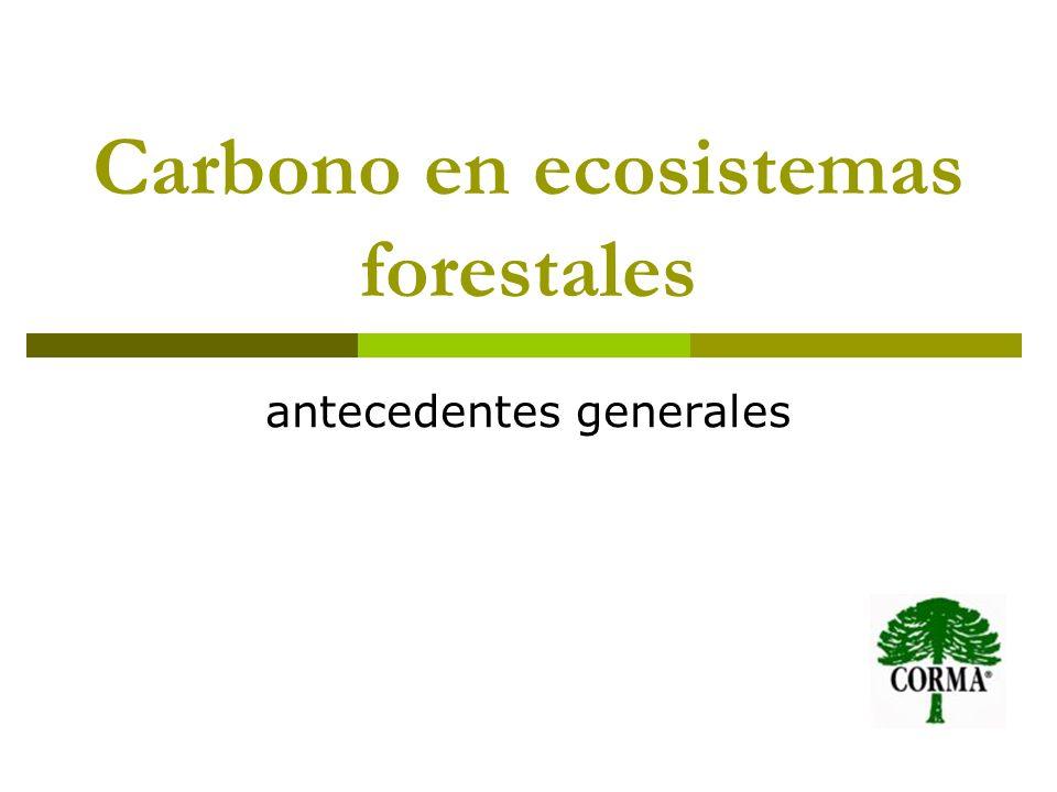 Carbono en ecosistemas forestales antecedentes generales