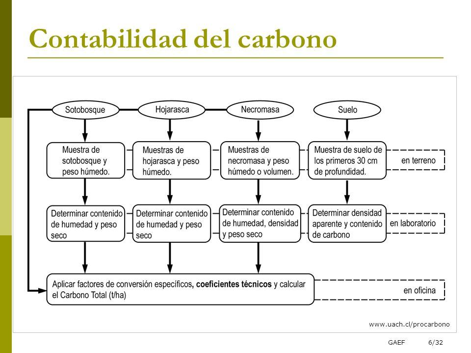 GAEF6/32 Contabilidad del carbono www.uach.cl/procarbono