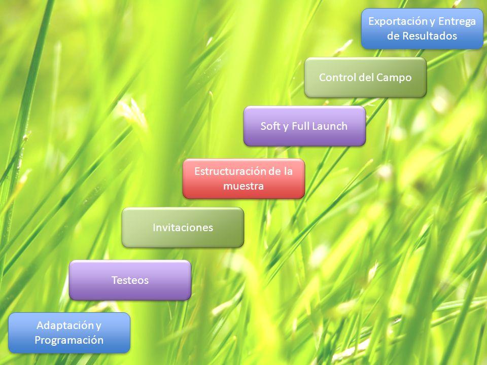 Adaptación y Programación Testeos Invitaciones Estructuración de la muestra Soft y Full Launch Control del Campo Exportación y Entrega de Resultados
