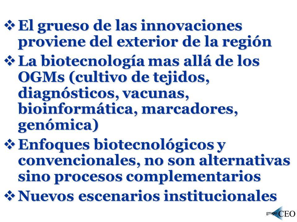 El grueso de las innovaciones proviene del exterior de la región El grueso de las innovaciones proviene del exterior de la región La biotecnología mas allá de los OGMs (cultivo de tejidos, diagnósticos, vacunas, bioinformática, marcadores, genómica) La biotecnología mas allá de los OGMs (cultivo de tejidos, diagnósticos, vacunas, bioinformática, marcadores, genómica) Enfoques biotecnológicos y convencionales, no son alternativas sino procesos complementarios Enfoques biotecnológicos y convencionales, no son alternativas sino procesos complementarios Nuevos escenarios institucionales Nuevos escenarios institucionales