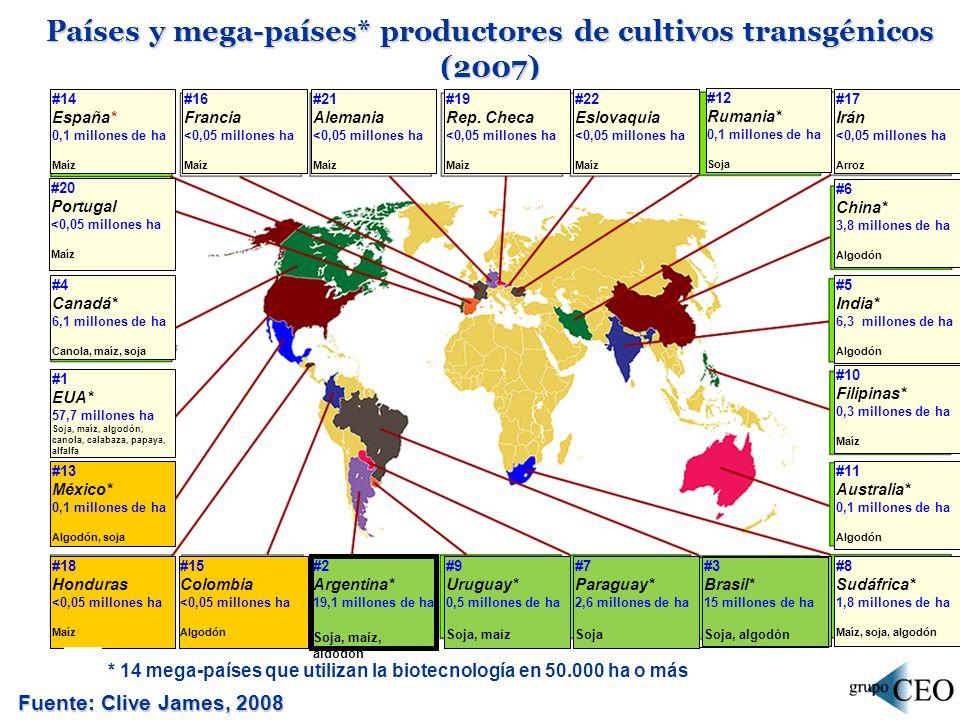 Países y mega-países* productores de cultivos transgénicos (2007) Fuente: Clive James, 2008 #14 España* 0,1 millones de ha Maíz #4 Canadá* 6,1 millones de ha Canola, maíz, soja #1 EUA* 57,7 millones ha Soja, maíz, algodón, canola, calabaza, papaya, alfalfa #13 México* 0,1 millones de ha Algodón, soja #12 Rumania* 0,1 millones de ha Soja #6 China* 3,8 millones de ha Algodón #5 India* 6,3 millones de ha Algodón #10 Filipinas* 0,3 millones de ha Maíz #11 Australia* 0,1 millones de ha Algodón #8 Sudáfrica* 1,8 millones de ha Maíz, soja, algodón #3 Brasil* 15 millones de ha Soja, algodón #7 Paraguay* 2,6 millones de ha Soja #9 Uruguay* 0,5 millones de ha Soja, maíz #2 Argentina* 19,1 millones de ha Soja, maíz, algodón #15 Colombia <0,05 millones ha Algodón #18 Honduras <0,05 millones ha Maíz #20 Portugal <0,05 millones ha Maíz #16 Francia <0,05 millones ha Maíz #21 Alemania <0,05 millones ha Maíz #19 Rep.