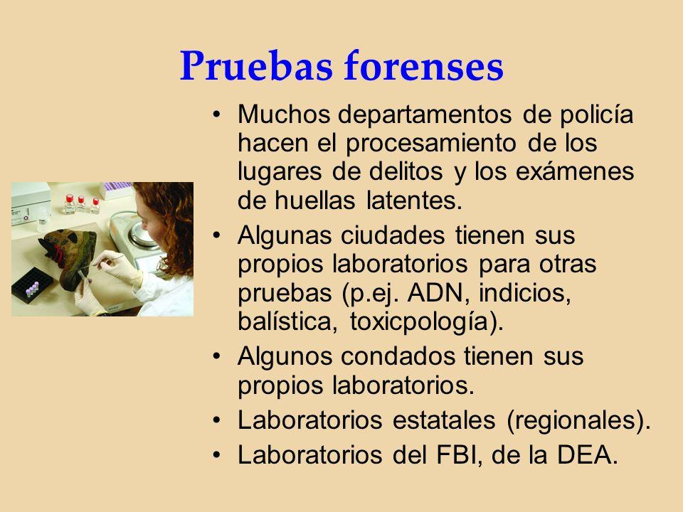 Pruebas forenses Muchos departamentos de policía hacen el procesamiento de los lugares de delitos y los exámenes de huellas latentes.